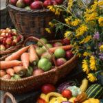 HarvestBasket-Cavagnaro